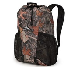 High Sierra Backpacks high sierra pack in bottle